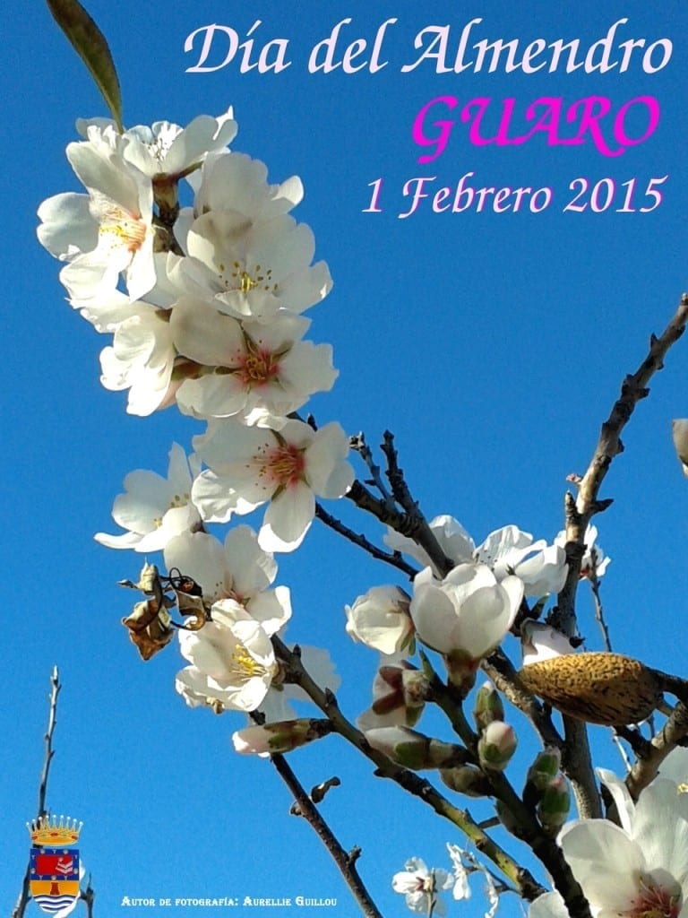 Almond Day in Guaro